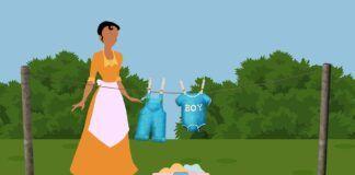 bonus casalinghe 2020